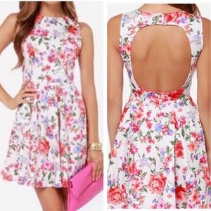 Lulu's Floral Skater Dress Sz XS :: SS10